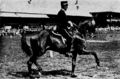 Sven Colliander with horse Kål.png
