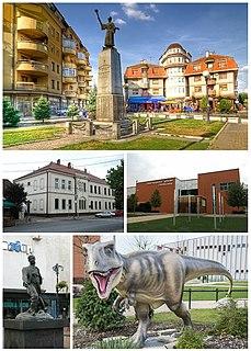 Svilajnac Town and municipality in Šumadija and Western Serbia, Serbia