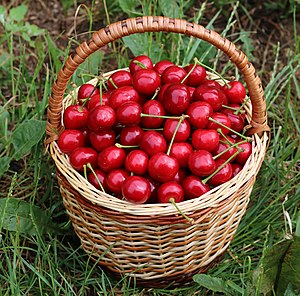 Sweet cherries in basket 2018 G2.jpg