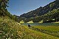 Swiss Landscape (23877946462).jpg
