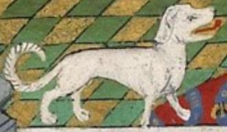 Talbot (dog) - Talbot hound, 1445 depiction