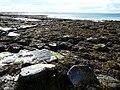 Tankerness Coastal Scenery - geograph.org.uk - 910680.jpg