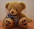 Teddy Bear 45 flash.jpg