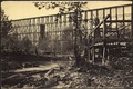 Tennessee, Whiteside, Trestle Bridge - NARA - 533377.tif