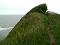 The Cleveland Way a squeeze between trees and fence - geograph.org.uk - 469026.jpg