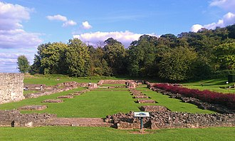 Lesnes Abbey Woods - The woods in the background of this image of the Abbey.