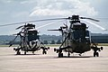 The Navy kindly drives these Sea Kings, or Commandos, for the Royal Marines (3643307527).jpg
