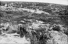The terrain around Baby 700 as viewed from The Nek, taken after the war. There is a Turkish memorial in the distance, and sun bleached human remains in the foreground