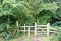 The Nelson gate - geograph.org.uk - 1394058.jpg