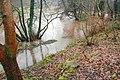 The River Lagan in flood (1) - geograph.org.uk - 664376.jpg