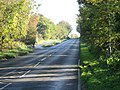The Road To Scoulton And Higham - geograph.org.uk - 293197.jpg