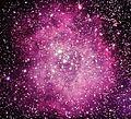 The Rosette nebula.jpg