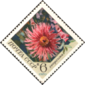 The Soviet Union 1970 CPA 3944 stamp (Dahlia).png