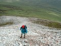 The ascent of Errigal, highest mountain in Donegal - geograph.org.uk - 126164.jpg