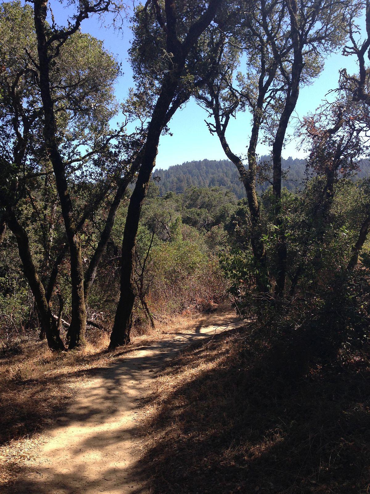 University San Francisco >> Thornewood Open Space Preserve - Wikipedia