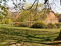 Throop, the pond from under a tree - geograph.org.uk - 1240040.jpg