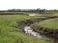 Tidal creek and the Annan estuary - geograph.org.uk - 572334.jpg