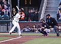 Tim Lincecum batting.jpg