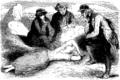 Tony Johannot-G Sand-Jeanne-1853 p229.png