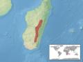 Trachylepis boettgeri distribution.png