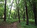 Trebisov Andrassyovsky kastiel (park)-37.JPG
