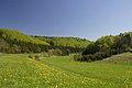 Trockental Ringingen-Burladingen Schwaebische-Alb.jpg