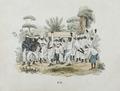 Tropenmuseum Royal Tropical Institute Objectnumber 3444-7 Begrafenis bij plantageslaven1.tif