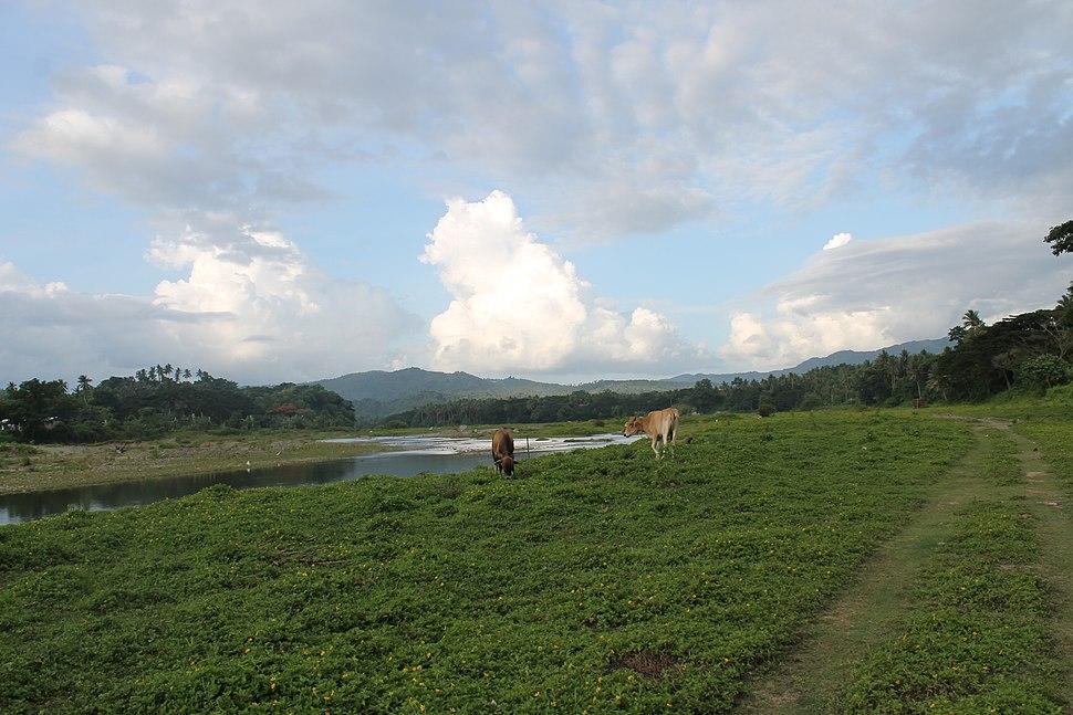 Tumapon Riverbank