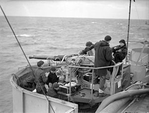 HMS Tracker (D24) - A twin 40 mm Bofors anti-aircraft gun; such weapons were mounted on Tracker