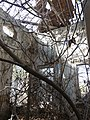 Tyre KhanRabu-Ruins OvergrownRoom RomanDeckert21112019.jpg