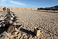 U.S. Marines with Transportation Support Company, Combat Logistics Regiment 2, 2nd Marine Logistics Group, train in combat marksmanship during Enhanced Mojave Viper (EMV), on Marine Corps Air Ground Combat 120920-M-KS710-005.jpg