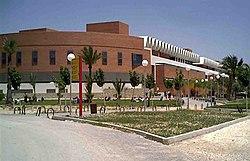 UMHUniversitat.jpg
