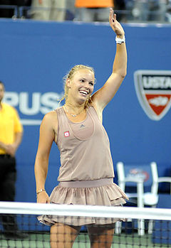 US Open 2009 4th round 272.jpg