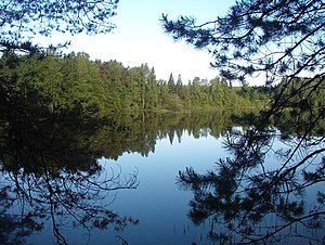 Uglichsky District - The Uleyma River in Uglichsky District
