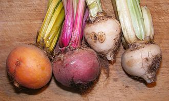 Beeturia - A selection of differently colored beetroot varieties