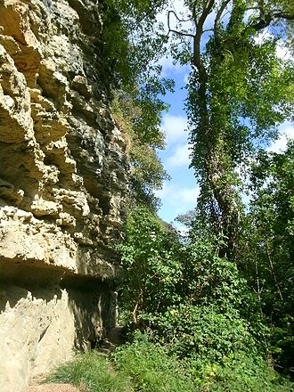 Undercliff (Isle of Wight) - Upper Greensand crags backing the Undercliff, Isle of Wight, above Steephill.