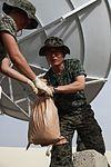 Unloading sand bags DVIDS299714.jpg