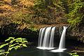 Upper Butte Creek Falls (6270966505).jpg