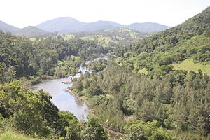 Manning River - Manning River, upstream of Mount George