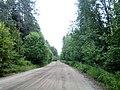 Valdaysky District, Novgorod Oblast, Russia - panoramio (458).jpg