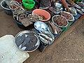 Vengurla Fish Market.jpg