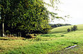 View from Crowcombe Park Gate - geograph.org.uk - 67690.jpg