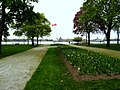 View of Detroit River (4546932446).jpg