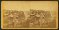View of Fisherville, N.H, by Lamprey, M. S. (Maurice S.).png