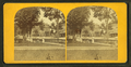 View of a park with large buildings in the background, by D. T. Reed.png
