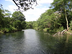 View of the Tsavo River in Tsavo West National Park.jpg
