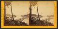 View on the Columbia River from the O.R.R. Cascades, by Watkins, Carleton E., 1829-1916.png
