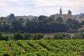 Vignes à Villars près d'Ap.jpg