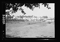 Vintage activities at Richon-le-Zion, Aug. 1939. Richon-le-Zion. Gen(eral). Distant view, closer view LOC matpc.19794.jpg