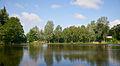 Visvijver Zoet Water Oud-Heverlee B.jpg